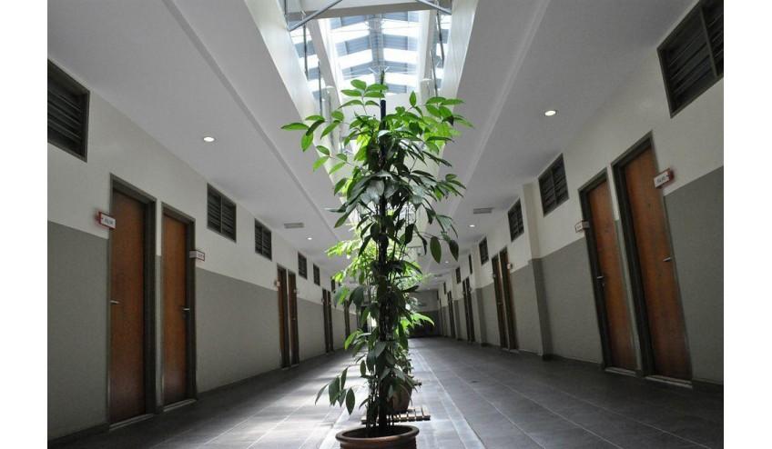 oyo 497 eq ferringhi hotel penang rh cuticuti malaysia com